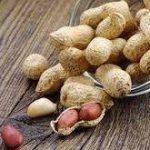 بادام زمینی ایرانی