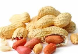بادام زمینی ایرانی خوب