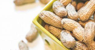 فروش بادام زمینی ایرانی