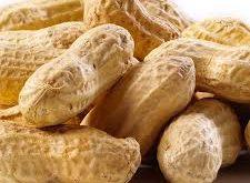 تهیه بادام زمینی