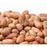 خرید بادام زمینی