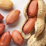 فروش بذر بادام گیلان