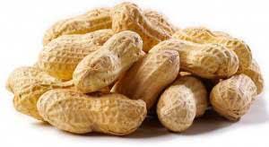 قیمت خرید بذر بادام