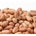 توزیع بذر بادام
