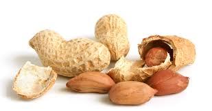قیمت انواع بادام زمینی