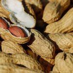 انواع بذر بادام زمینی