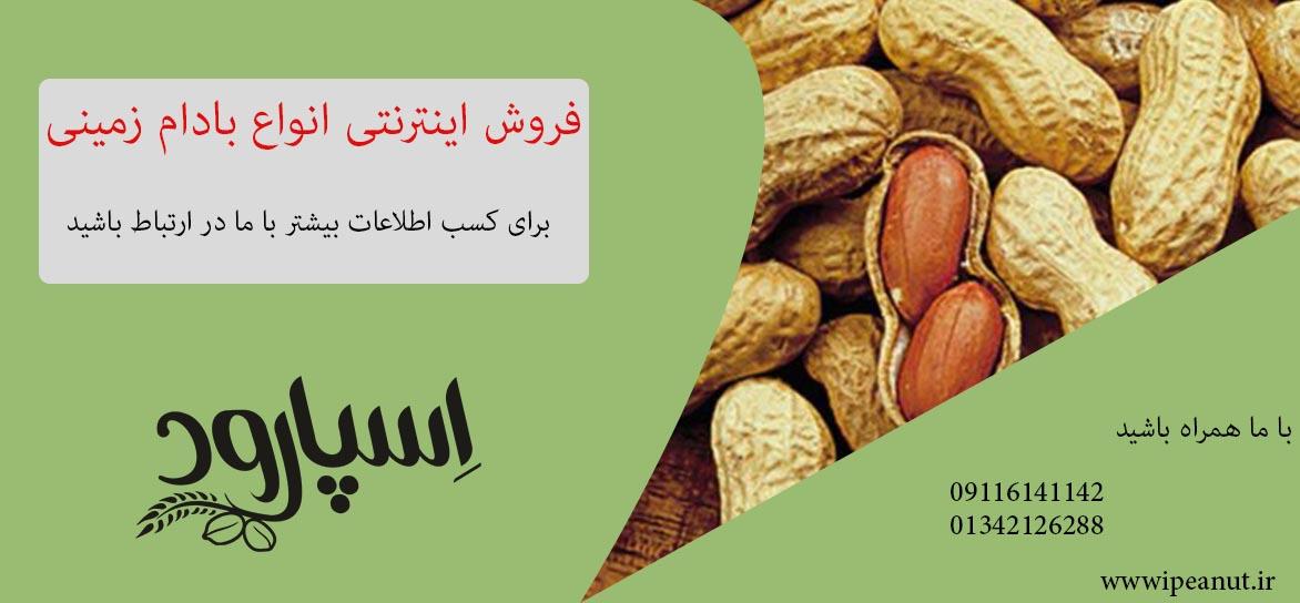 مراکز فروش بادام زمینی